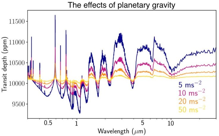 The effect of gravity